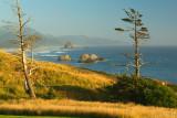 Ecola State Park Headlands