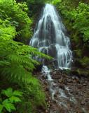 Columbia River Gorge - Fairy Falls