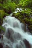 Columbia River Gorge - Wahkeena Creek Wide Angle