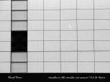 Grid 18800034 copy.jpg