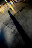 June 7th Alt - Long Shadows