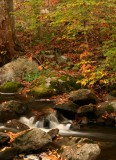 Emma's Creek.