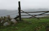 The farm gate at dawn.