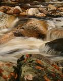 Emma's Creek