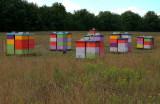 IMG_3599 ruches en folie.jpg