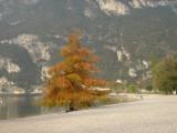 Riva del Garda 2005
