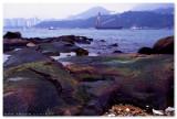 Lei Yue Mun - 鯉魚門