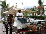 Mexican horse drawn carriage