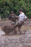 swamp 224.JPG