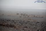 Sand Storm building up around area.jpg
