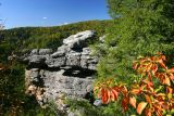 Rock formation near canyon rim  #1