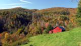 Local Scenery #6 (Pine Mountain)