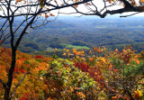 Local Scenery (A view from Pine Mountain)