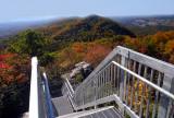 Local scenery (Birch Knob area)