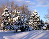 Colorado Blizzards of 2006