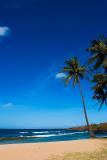 August 2007 - Kauai, Hawaii