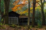 The Autumn Suite