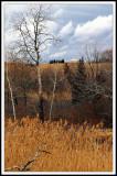 Three Layer Lehigh Landscape