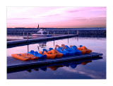 Early Morning Paddle Boats