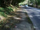 Débris piste cyclable bidirectionnelle - Av. Dubois.JPG