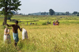 Bastar - Chhattisgarh - India