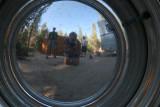 Reflection in  Lynda's Tear Drop trailer wheel .