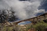 arches nat'l park