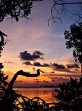 Prospect Sunset 10
