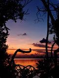 Prospect Sunset 7