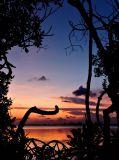 Prospect Sunset 6