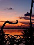 Prospect Sunset 5