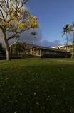 DSC_0490 late afternoon lawn.jpg