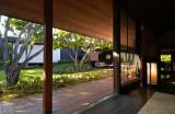 acad livingR backdoor green reflect.jpg