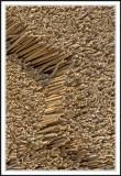 Reed patterns!