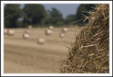 Fading bales!