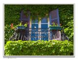May 21st: Ivy Balcony