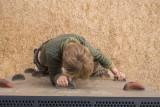 Girl on wall 3.jpg