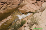 Capital Reef-water fall.jpg
