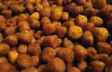 croquettesdry pet food