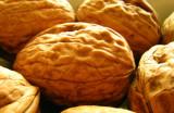 noixwalnuts