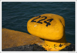 Moorage 224