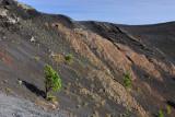 Inside the Crater of Volcan de San Antonio