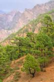Slopes in Caldera de Taburiente