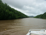 Daintree River (fishing)