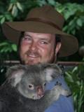 Hartleys Croc park - Koala