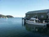 The morning of departure from Mangonui
