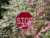 stop 129
