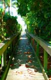 Vanderbilt Beach Access