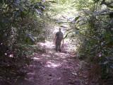 hike 0207060037.JPG