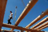 Log Cabin Construction, construction de fuste